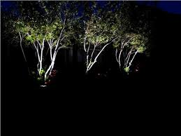 decorate your tree with outdoor tree lights