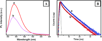 an efficient charge separation and photocurrent generation in the
