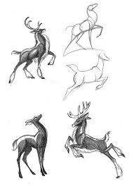 25 deer drawing ideas deer art