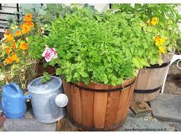 herb planter diy 100 herb garden diy planters indoor wall planter herb