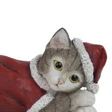 kitten cat animal ornaments or grey gardens2you