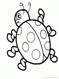 printable ladybug template kids coloring