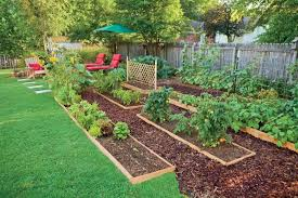 Edible Landscaping How To Eat Your Yard - Designing your backyard