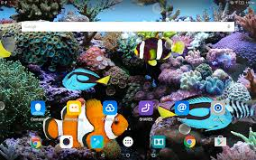 live halloween wallpapers for desktop coral fish 3d live wallpaper android apps on google play