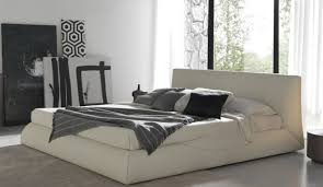 Canopy Bed Ideas Bed Canopy Bed With Storage Infatuate Black Canopy Bed With