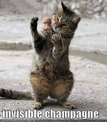 Happy New Year Cat Meme - happy new year everyview