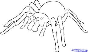 coloring trendy easy draw spider step6 coloring