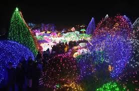 san jose christmas lights san jose tries to break guinness book of world record for largest