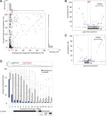 high throughput engineering of a mammalian genome reveals building