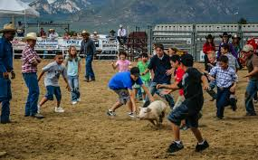New Mexico travel contests images Greased pig contest at rodeo de taos in taos new mexico albany jpg