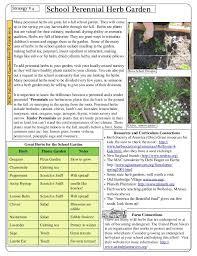 your fall garden a guide for massachusetts gardeners
