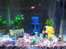 fish tank decoration ideas drone fly tours