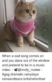 Internet Meme Song - 25 best memes about sad song sad song memes