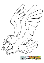 nice american eagle coloring page about different article