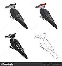 woodpecker icon cartoon style isolated white background