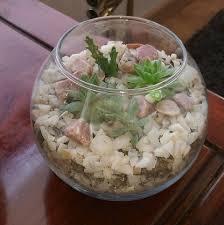 cuisine perenne terrarios antofagasta หน าหล ก