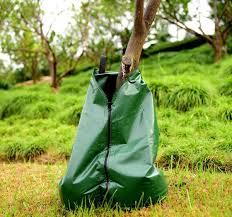 planted 20 gallon tree watering bag