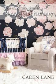 Hayley Nursery Bedding Set by 125 Best Baby Girl Nursery Ideas Images On Pinterest Babies