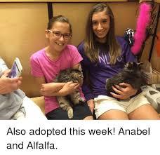 Alfalfa Meme - also adopted this week anabel and alfalfa meme on esmemes com