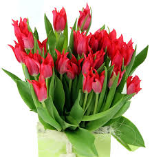 same day floral delivery the flowers of summer at flowers24hours same day flower
