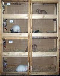 Stackable Rabbit Hutches Rabbit Cages Hostile Hare Is An Arizona Based U201clive Food Storage