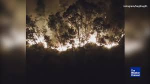 Collier County Flood Maps Dramatic Drone Video Of Florida Wildfire The Weather Channel