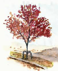 a token autumn tree sketch larry d marshall