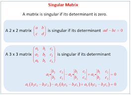 singular matrix solutions examples solutions videos