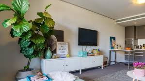 best house plants indoor plants why you need them and the best ones to boost your