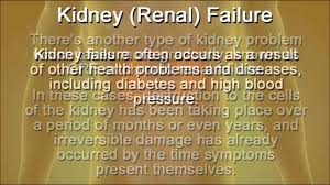diet plans for kidney disease and kidney failure foods to eat