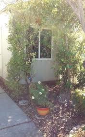 102 lemon tree circle vacaville ca 95687 intero real estate