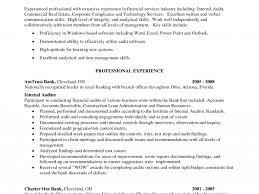 unusual design ideas internal resume 11 auditor resume sample