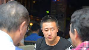 plastic hair grassy fashion trend sprouts on s heads in china cnn