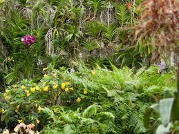 gardens u0026 collections new york botanical garden