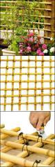 best 25 bamboo trellis ideas on pinterest plant trellis plant