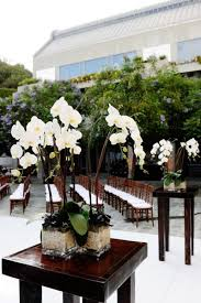 orchid centerpiece potted orchids centerpieces search gala