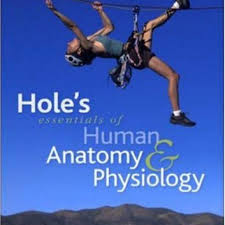hole u0027s human anatomy and physiology 14th edition by butler shier