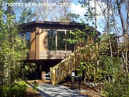 Treehouse Villas Floor Plan Treehouse Villas At Disney U0027s Saratoga Springs