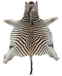 Genuine Zebra Rug Authentic Zebra Rug Rugs Ideas
