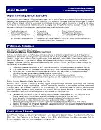 marketing executive resume account representative sle resume 19 marketing executive learn