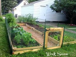 raised bed gardening in texas growing a great vegetable garden