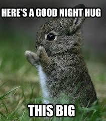 Give Me A Hug Meme - good night hug goodnight meme