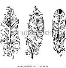 decorative bird feather stock vector 160557746