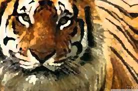 tiger art 4k hd desktop wallpaper for ipad