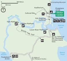katmai national park road runner photography tours
