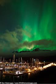 anchorage alaska northern lights tour 110 best alaska s aurora images on pinterest northen lights