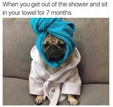 Towel Meme - when you get out of the shower and sit in your towel for 7 months