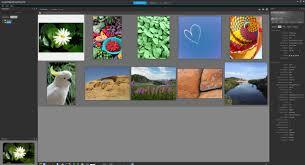 corel paintshop pro x9 review