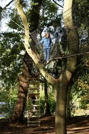 tree top walkways by treehouse a world away from everyday