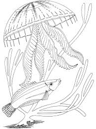 fresh sea coloring pages cool ideas for you 5439 unknown